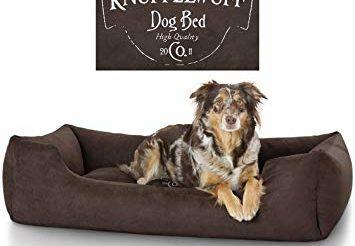 Quel est le meilleur lit pour chien photo 3