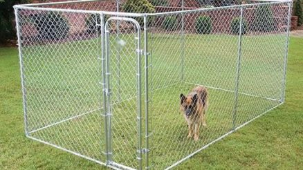 Quel est le meilleur parc pour chien photo 3