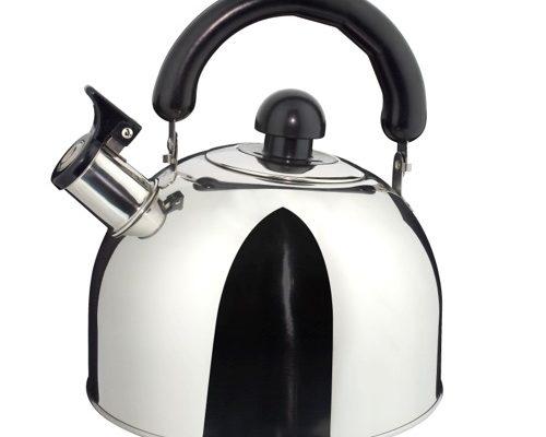 Quelle est la meilleure bouilloire à induction photo 3