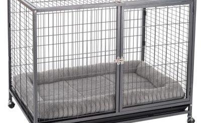 Quelle est la meilleure cage pour chien photo 3