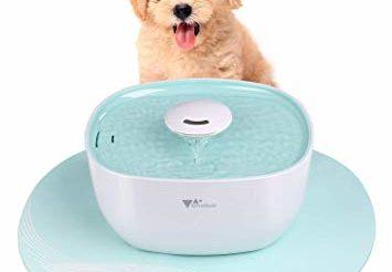 Quelle est la meilleure fontaine automatique eau pour chien photo 3