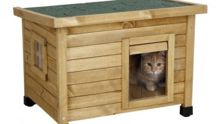 Quelle est la meilleure maison pour chat d'exterieur photo 3